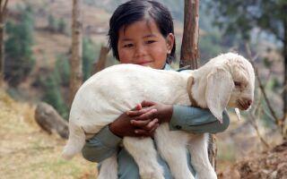 Непал — цікаві факти