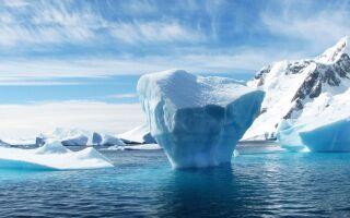 Цікаві факти про Антарктиду
