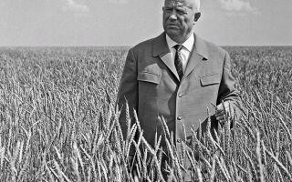 Микита Хрущов — цікаві факти