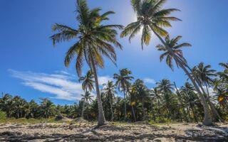 Домініканська республіка — цікаві факти