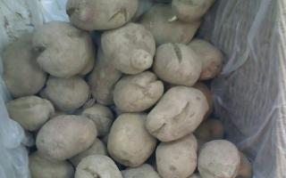 Чому на картоплі з'являються борозни