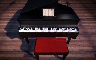 Музиканти — цікаві факти