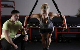 М'язи — цікаві факти