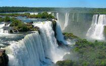Цікаво про рослинність, клімат та мешканців екваторіальних лісів Південної Америки