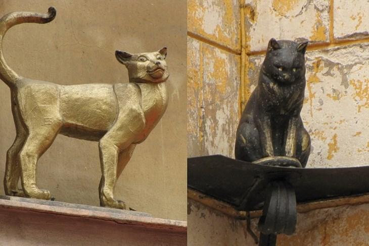 Пам'ятник кішці